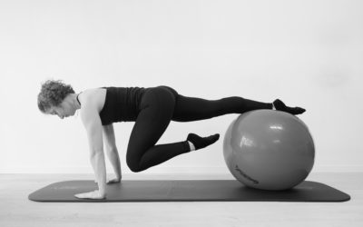 Workshop 2: Pilates and the Swiss Ball Revived! (advanced level)